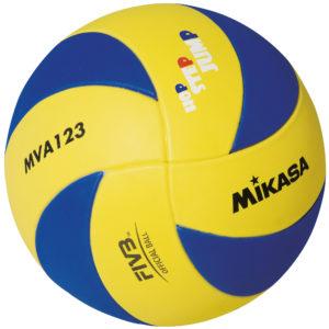 MVA123
